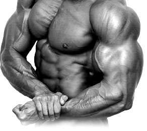 Niacin increase vascularity in bodybuilders