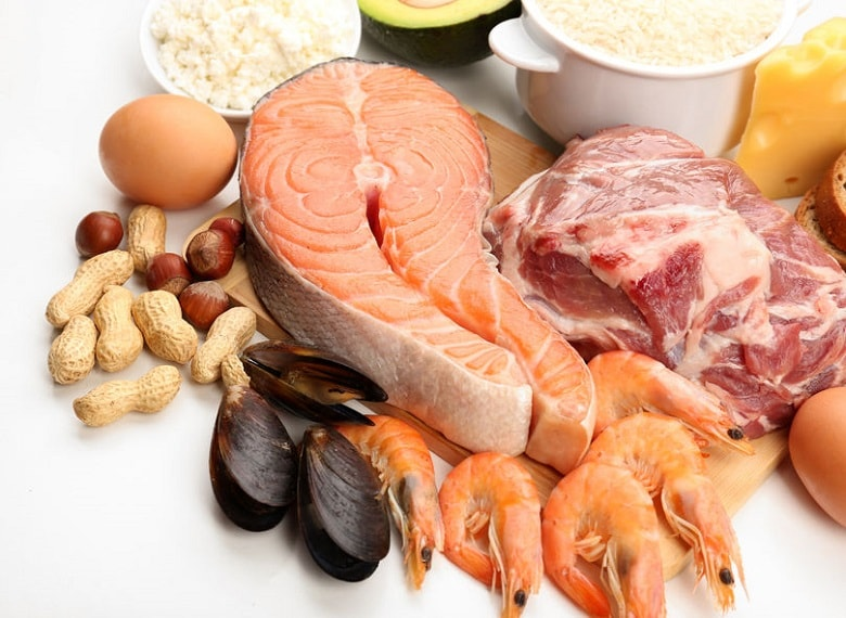 Protein in muscle building diet